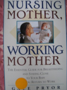 Nursing Mother, Working Mother by Gale Pryor